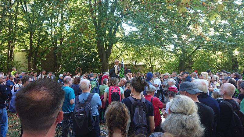 Waldspaziergang bei Gazweiler statt am Hambacher Forst